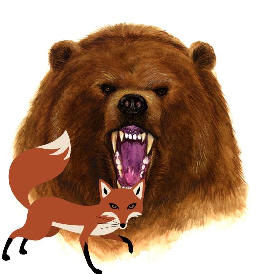 bearfox
